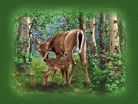 figuras pintura animais - Loide Figuras - Álbumes web de Picasa