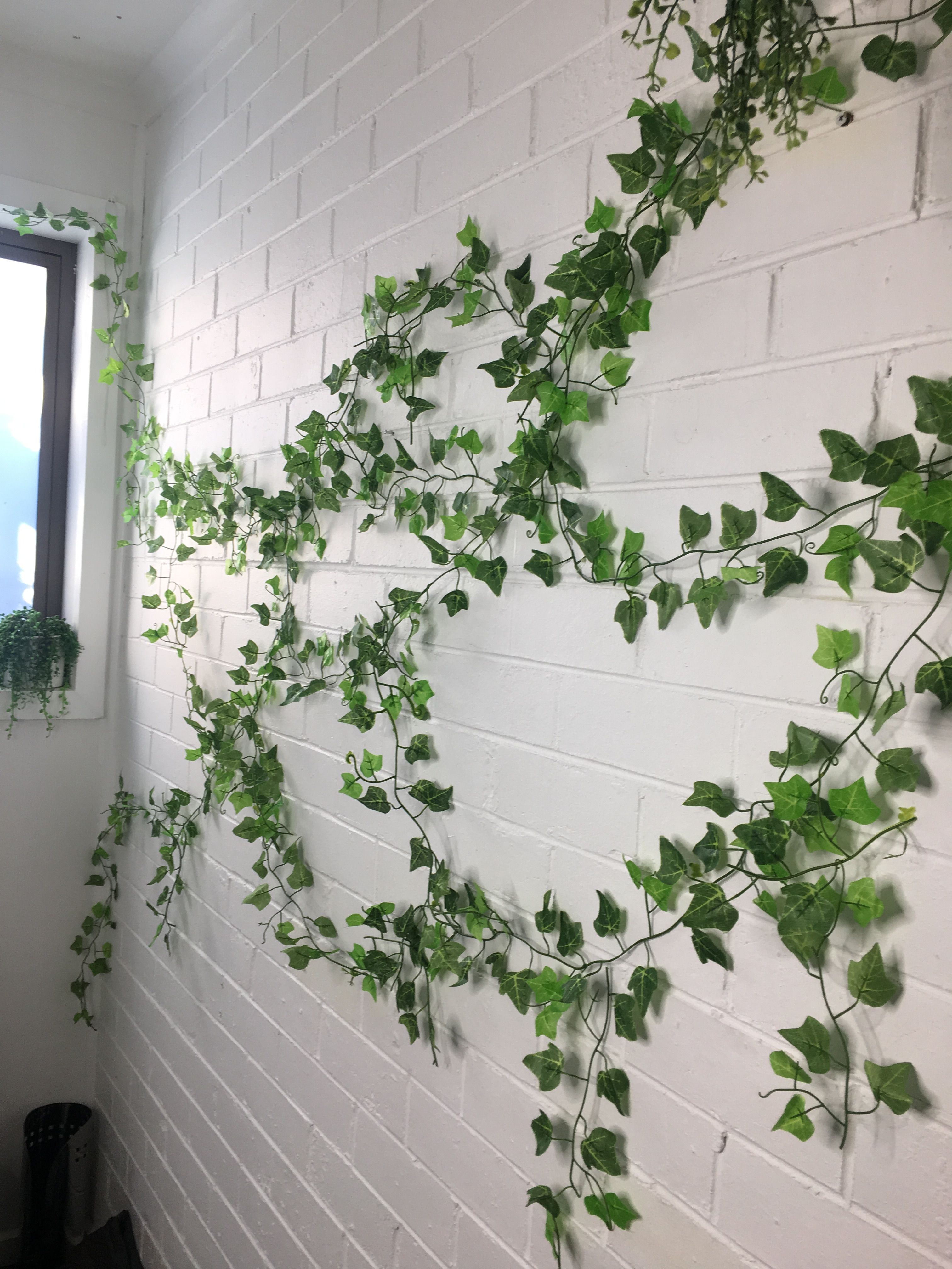 Best Kitchen Gallery: Ivy Wall On Bricks Indoor Ivy Wall Greenwall Cars And Mads of Tropical Ivy House Plants on rachelxblog.com