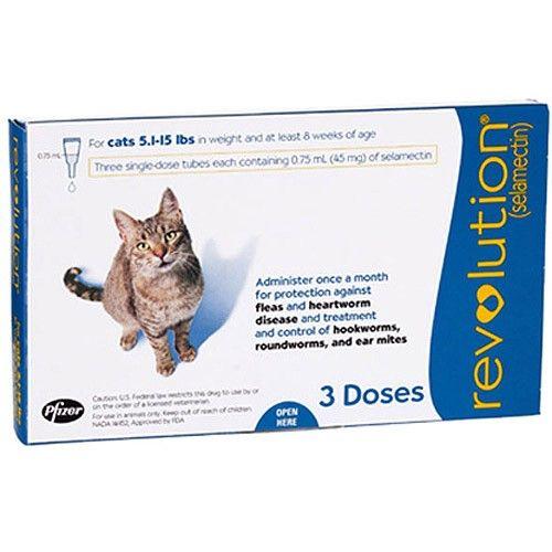 Revolution For Cats Cat Fleas Flea Prevention For Cats Fleas