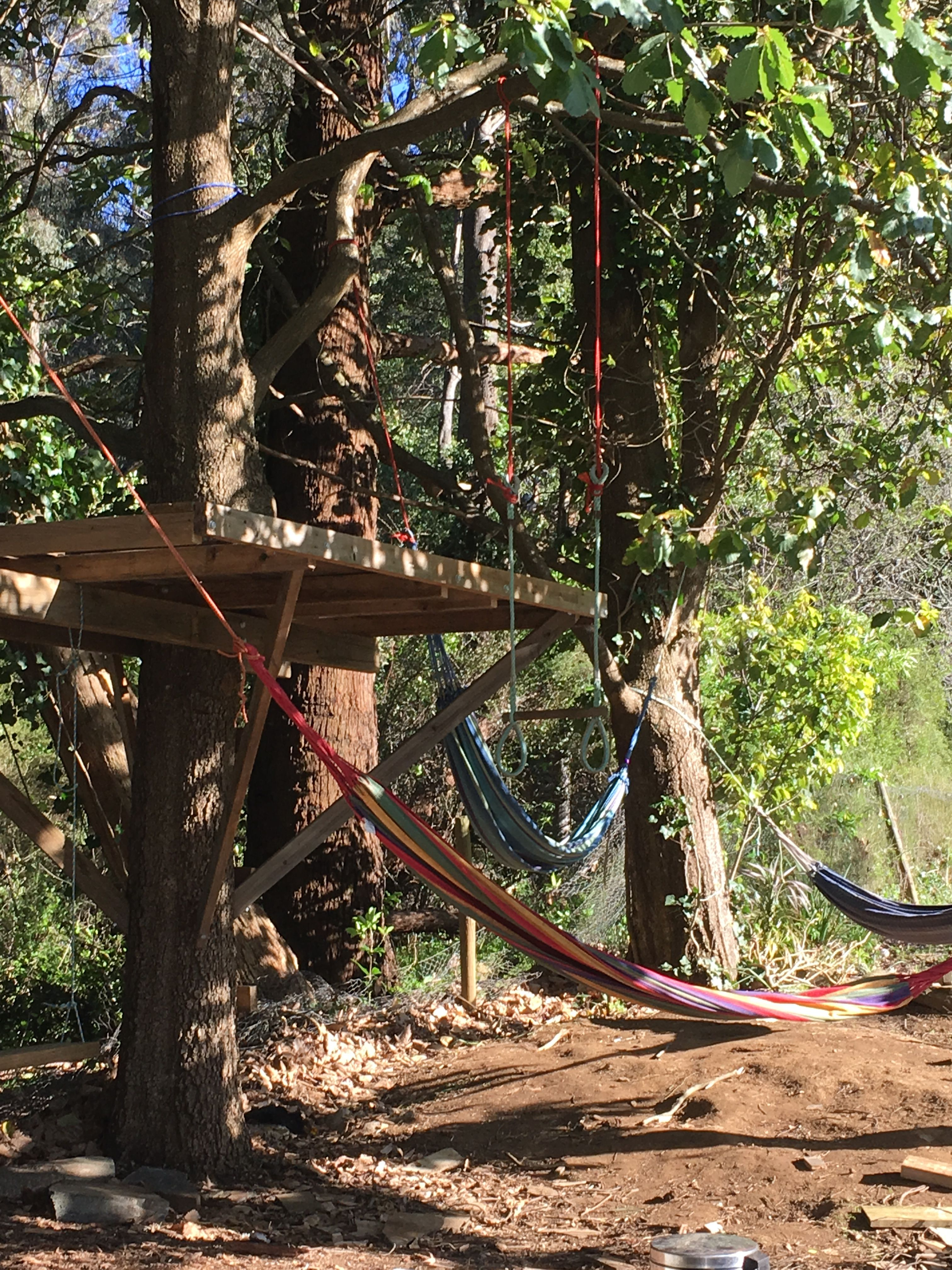 Treehouse base and hammock grove country house pinterest
