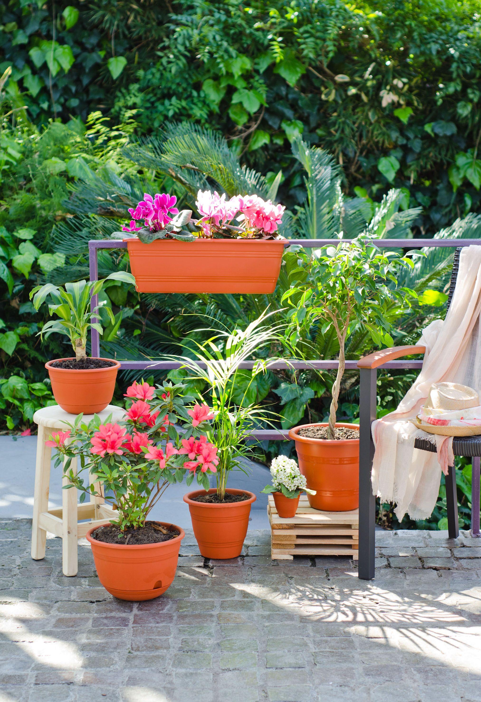Combinar Tama Os De Macetas Para Que Tus Plantas Luzcan M S Lindas  ~ Macetas Originales Para El Jardin