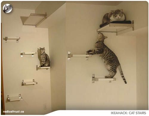 Ikea Shelf Cat Tower
