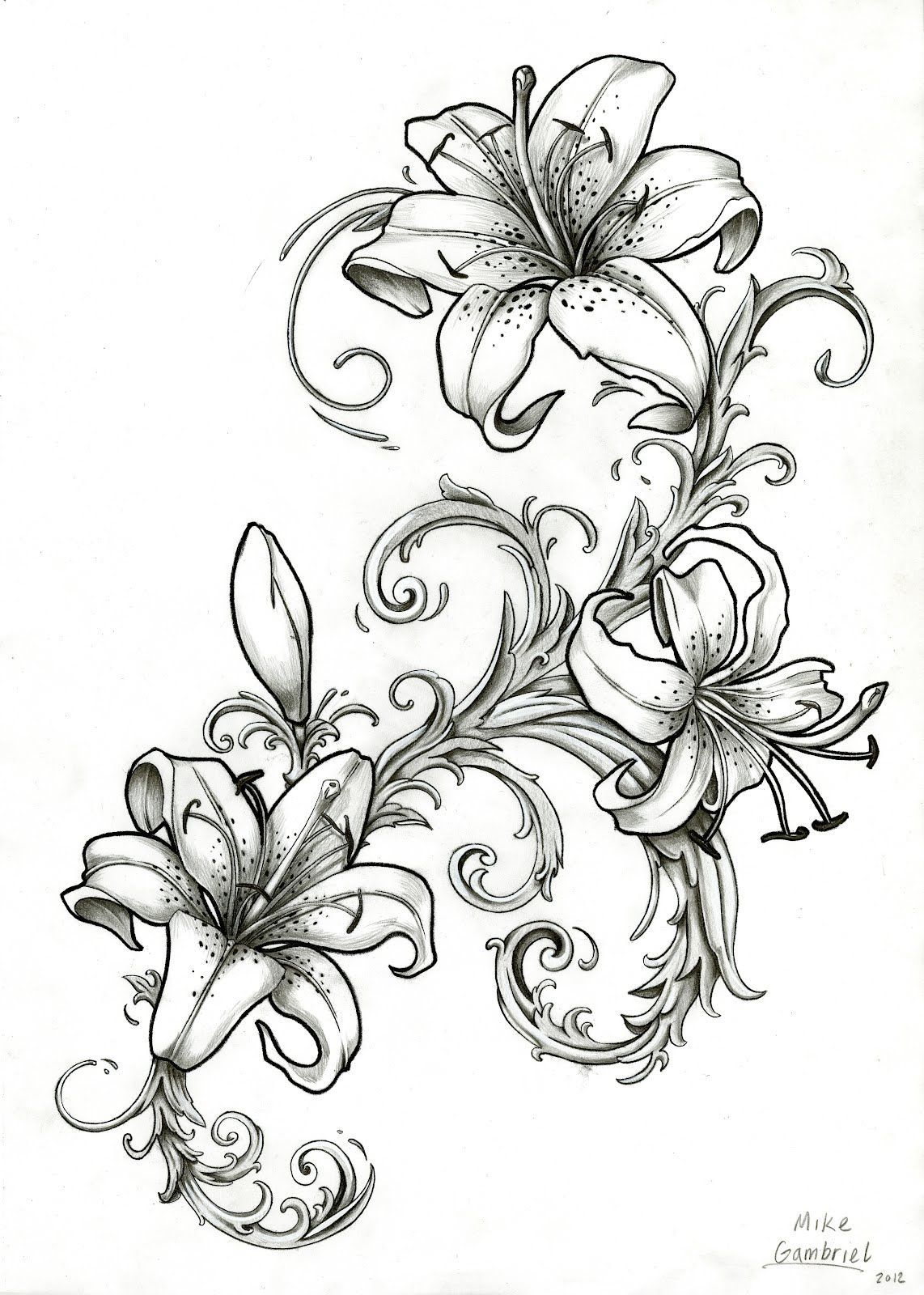 It is a graphic of Agile Tiger Lily Flower Drawing
