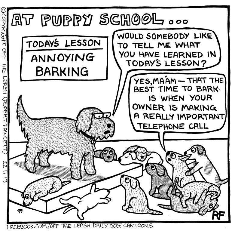 Puppy Cartoon Funny Dog Captions