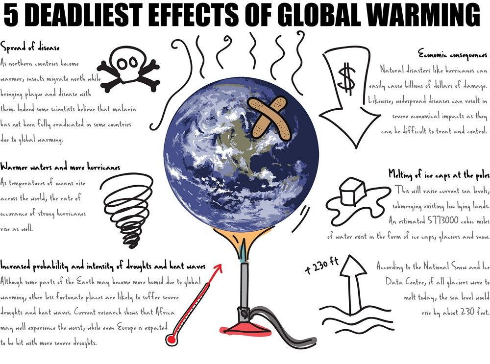 Five Terrible Effect Of Global Warming The Scientific Statistic Said That Temperature Environmental Studies Essay On And It Effects