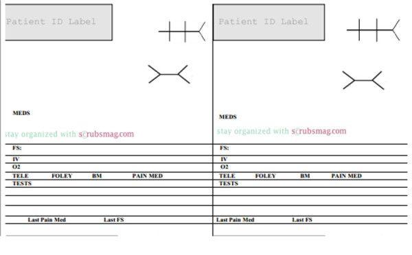 The 10 Best Nurse Brain Sheets   Nurse brain sheet, Nursing ...