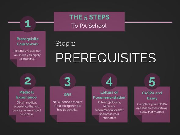 How to Design the Perfect Undergraduate Course Curriculum to Get into PA  School http:/