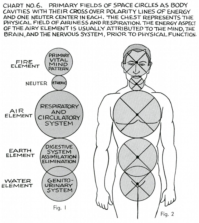 """Polarity Therapy Charts 1-6, 11-13 """" Polarity... at METANOIA-WORLD ..."""