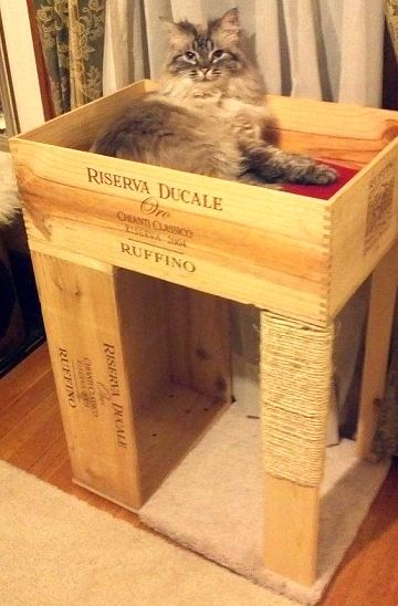Dishfunctional Designs Cool Cat Houses For Cats Diy