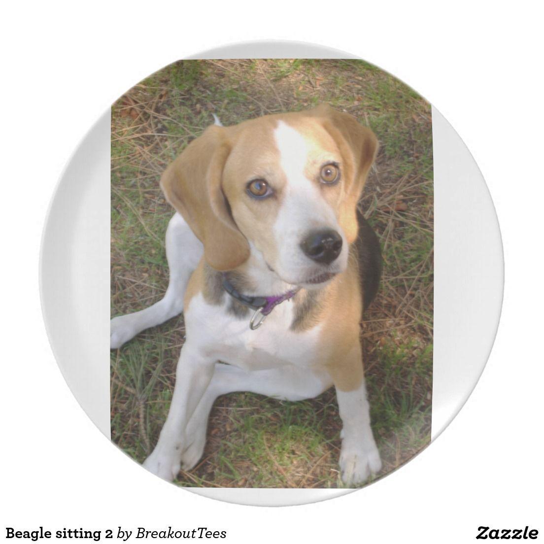 Beagle Sitting 2 Melamine Plate Zazzle Com Dogs Beagle Pet Dogs