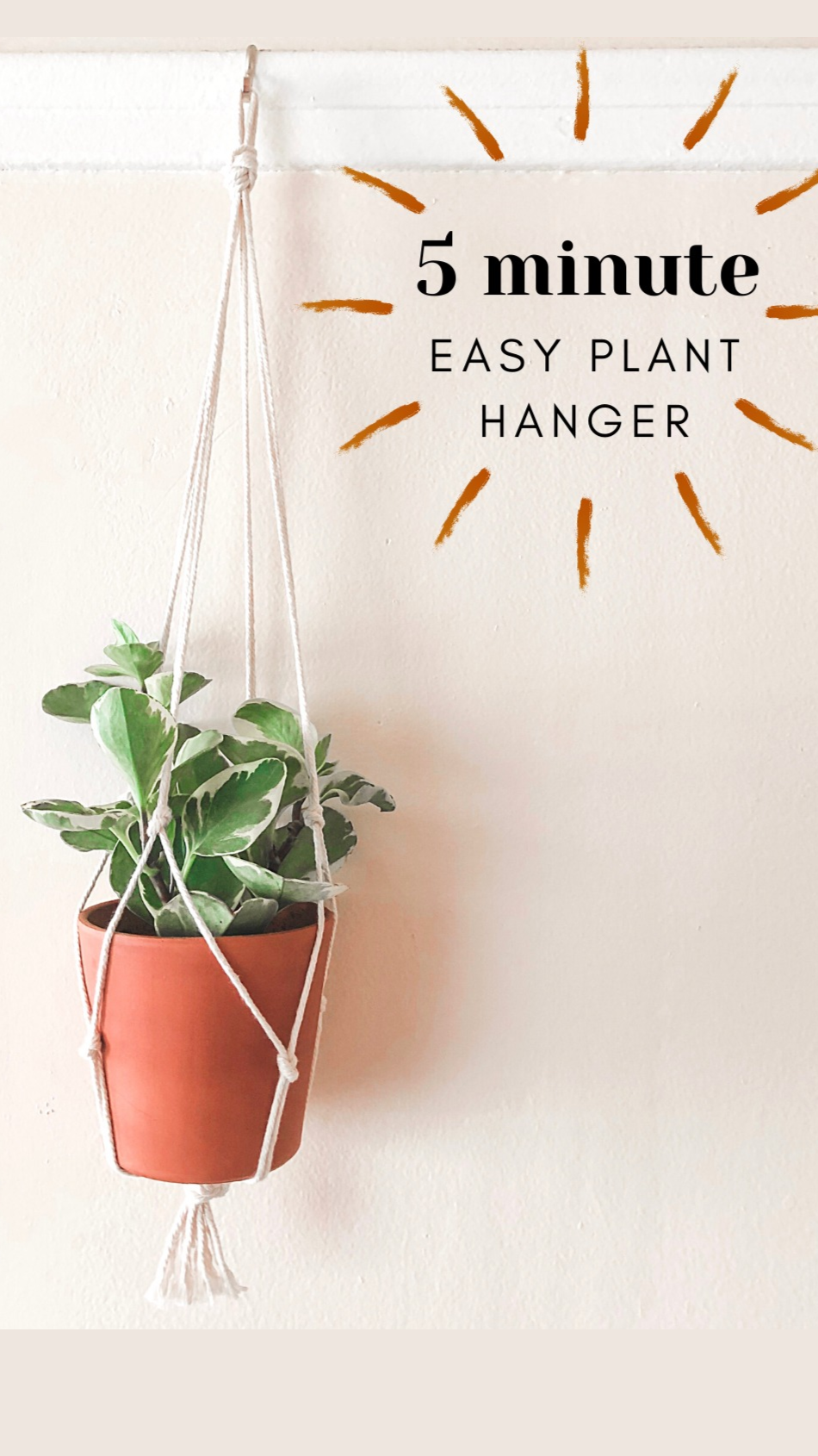 Creative way to hang your plant pot