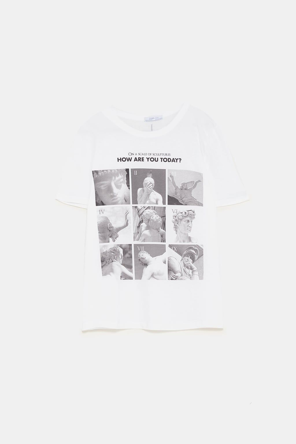 a6d3c2ef Image 8 of PRINTED STATUES T-SHIRT from Zara | s t y l e. in 2019 ...