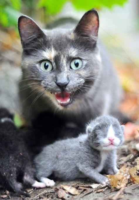 New mom.