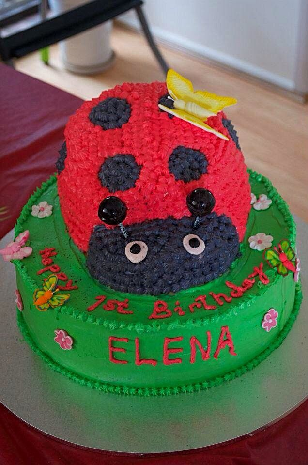 Lady Bug w yellow Butterfly on its back Birthdays