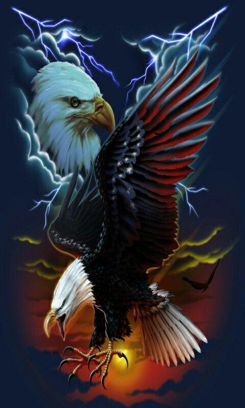 Pin By Kenneth Kowalski On Rozne Eagle Wallpaper Eagle Images Eagle Art Cool eagle wallpaper 3d