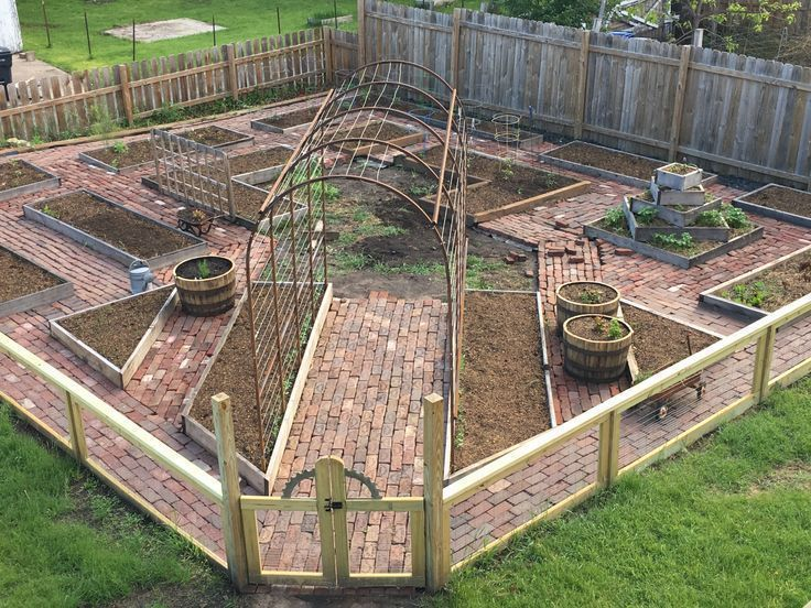 Photo of Brick paths within the backyard of raised beds with a home made arch for pumpkin…