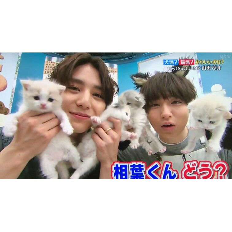 They Are Too Cuteee 山田涼介 かわいい やまちね 知念