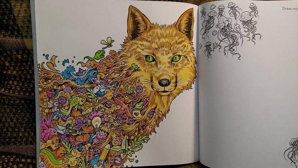 Animorphia An Extreme Colouring And Search Challenge Kerby Rosanes 9781910552070 Amazon