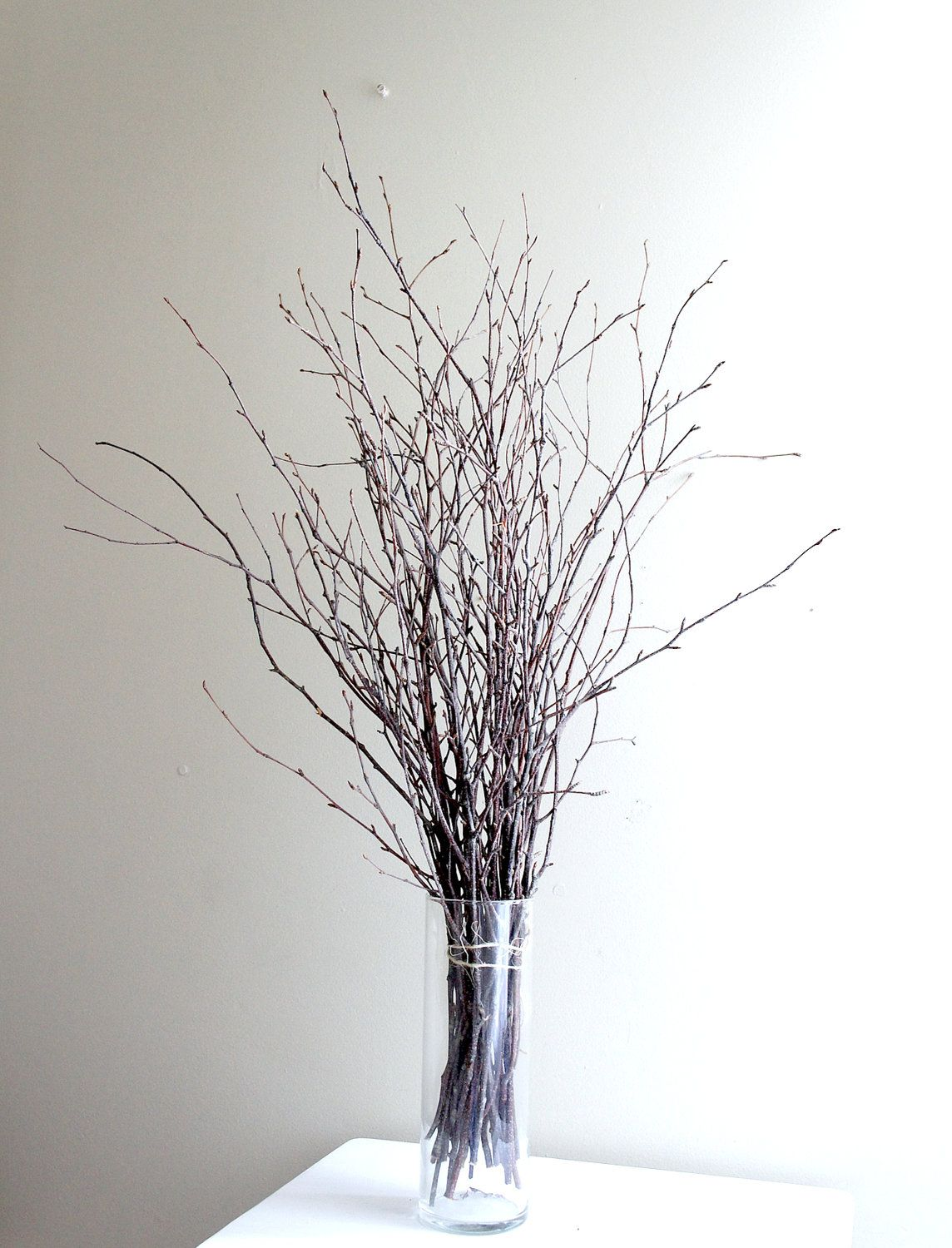 Sale Natural White Birch Twigs For Diy Projects 14 00 Via Etsy Dried Flowers Twig Diy Projects