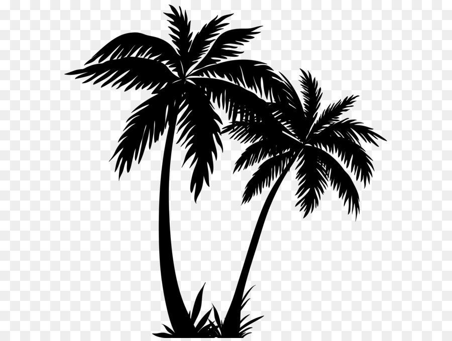 Arecaceae Silhouette Sunset Palm Trees Silhouette Png Clip Art Image Png Is About Is About Plant Leaf Mo Palm Tree Art Palm Tree Clip Art Palm Tree Drawing