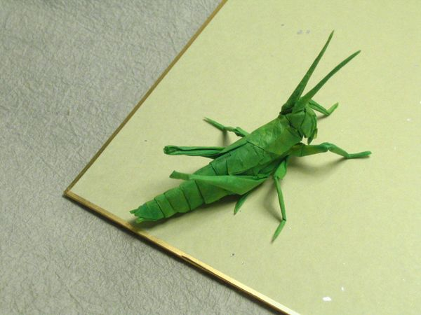 Realistic Origami Insects Made From One Sheet Of Uncut Paper Artsy