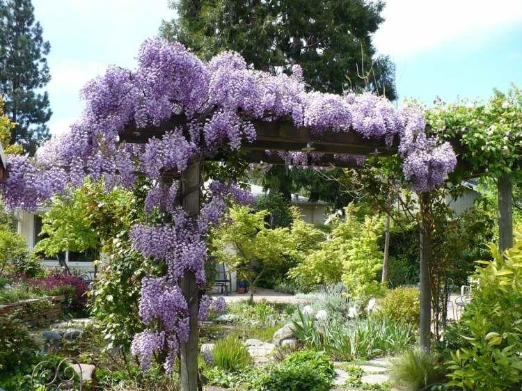garten bepflanzen blumen – godsriddle, Gartenbeit