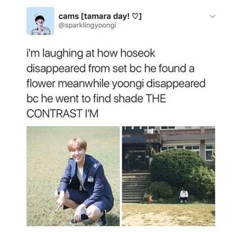 Hoseok and Yoongi Oppa being opposites || Sobi || Yoonseok