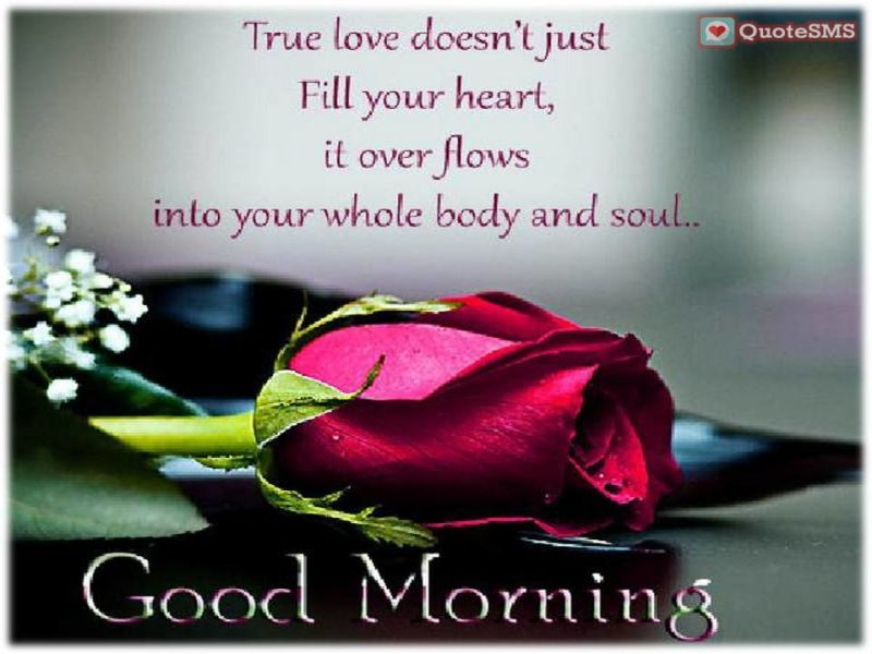 Genial Send A Sweet #MorningWishes To Your Guy To Wish Him A Romantic Good Morning.