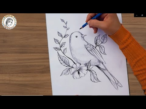 Pin By Hd Drawing Academy On Drawing For Beginners Drawing For Beginners Pencil Drawings Dreamcatcher Tattoo