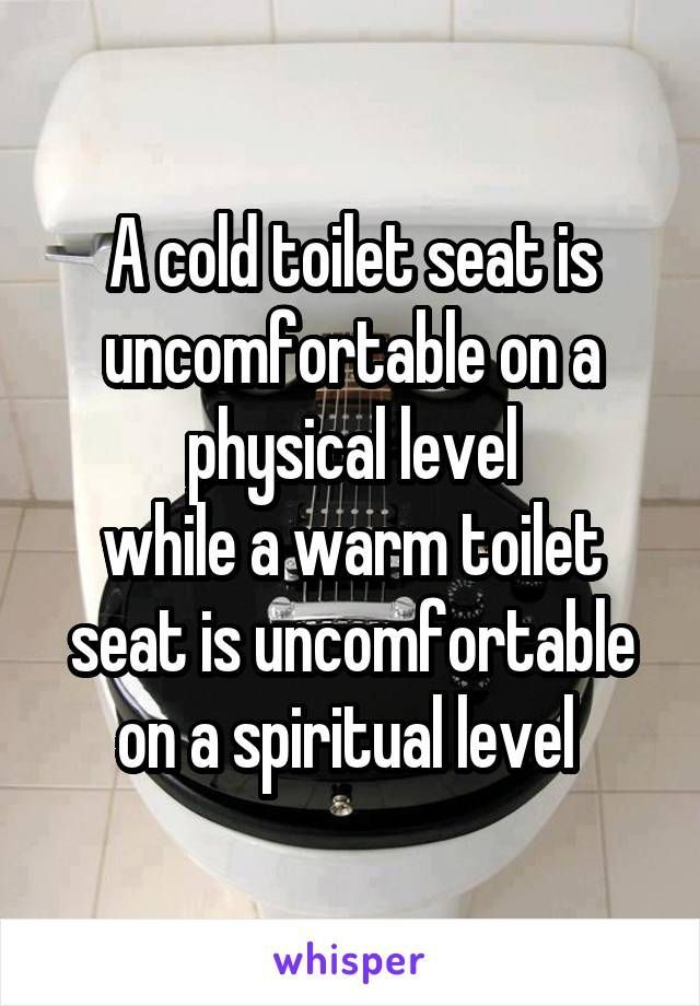A Cold Toilet Seat Is Uncomfortable On A Physical Level While A