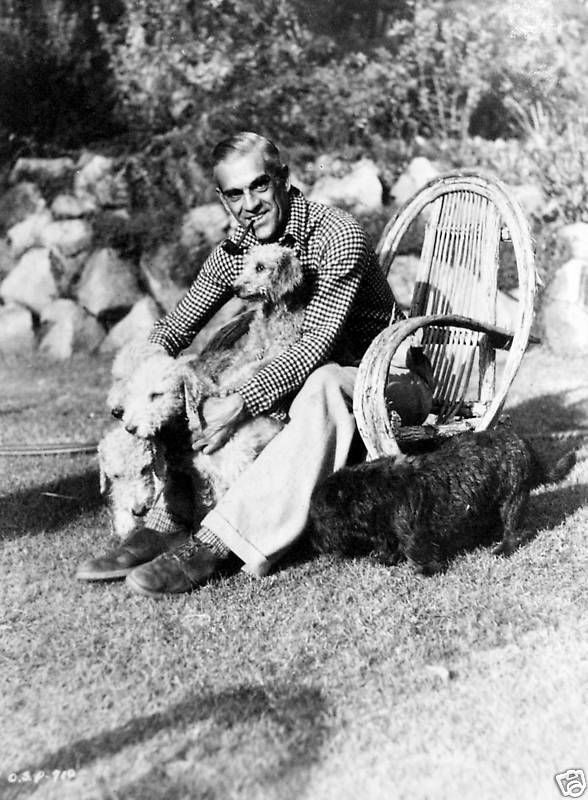 Karloff And His Dogs Bedlington Dog Boris Karloff Vintage Dog