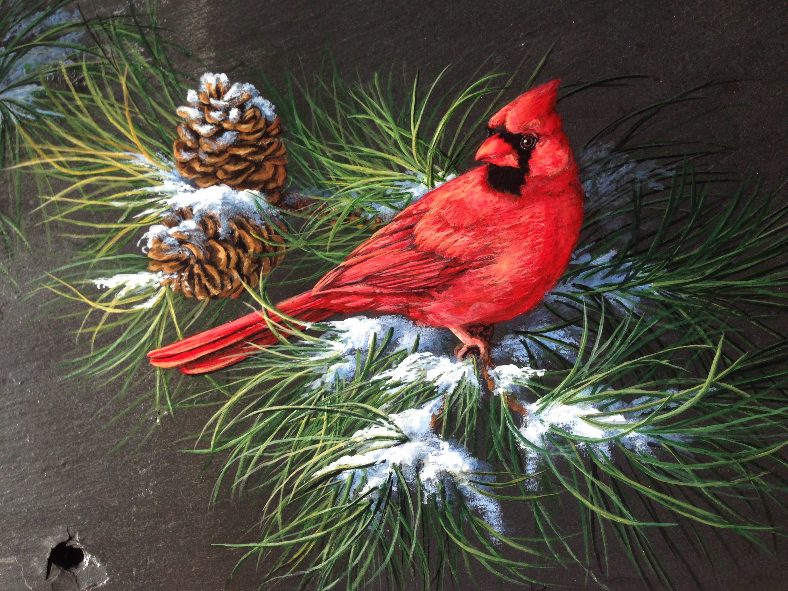 Male Cardinal Painting On Slate By Sherrylpaintz