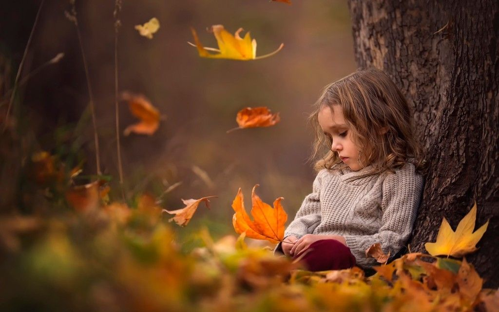 Cute Little Girl Sitting Alone In Forest Hd Wallpaper Photo