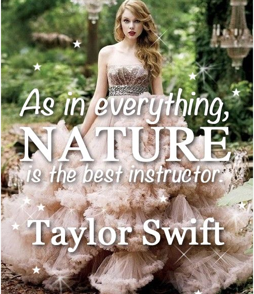 Who Said It?  Click link to see that it is NOT a Taylor Swift quote ...