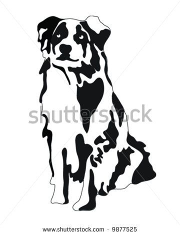 Australian Shepherd Dog Vector Illustration