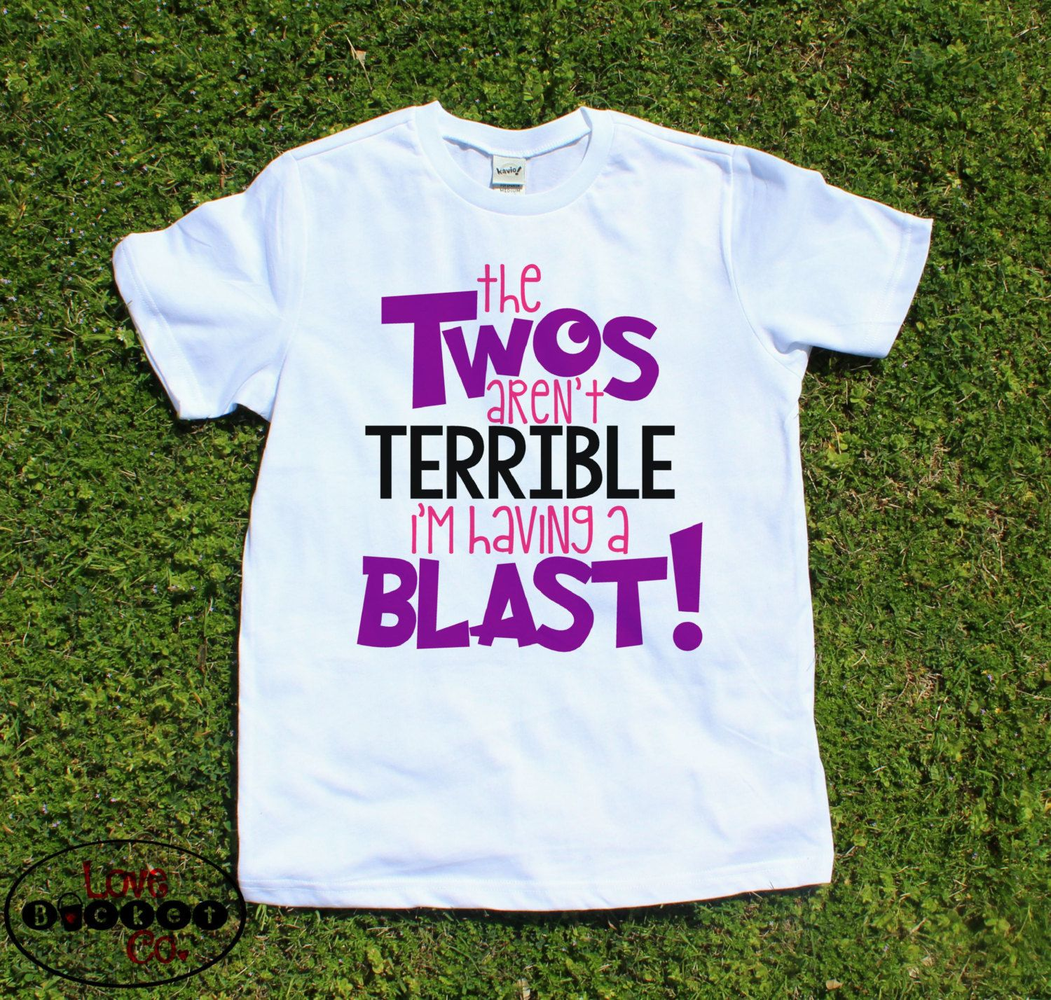 Girls 2nd Birthday Shirt Two Year Olds Toddler Second Outfit The Twos Arent Terrible Im Having A Blast Clothes By LoveBucketCo