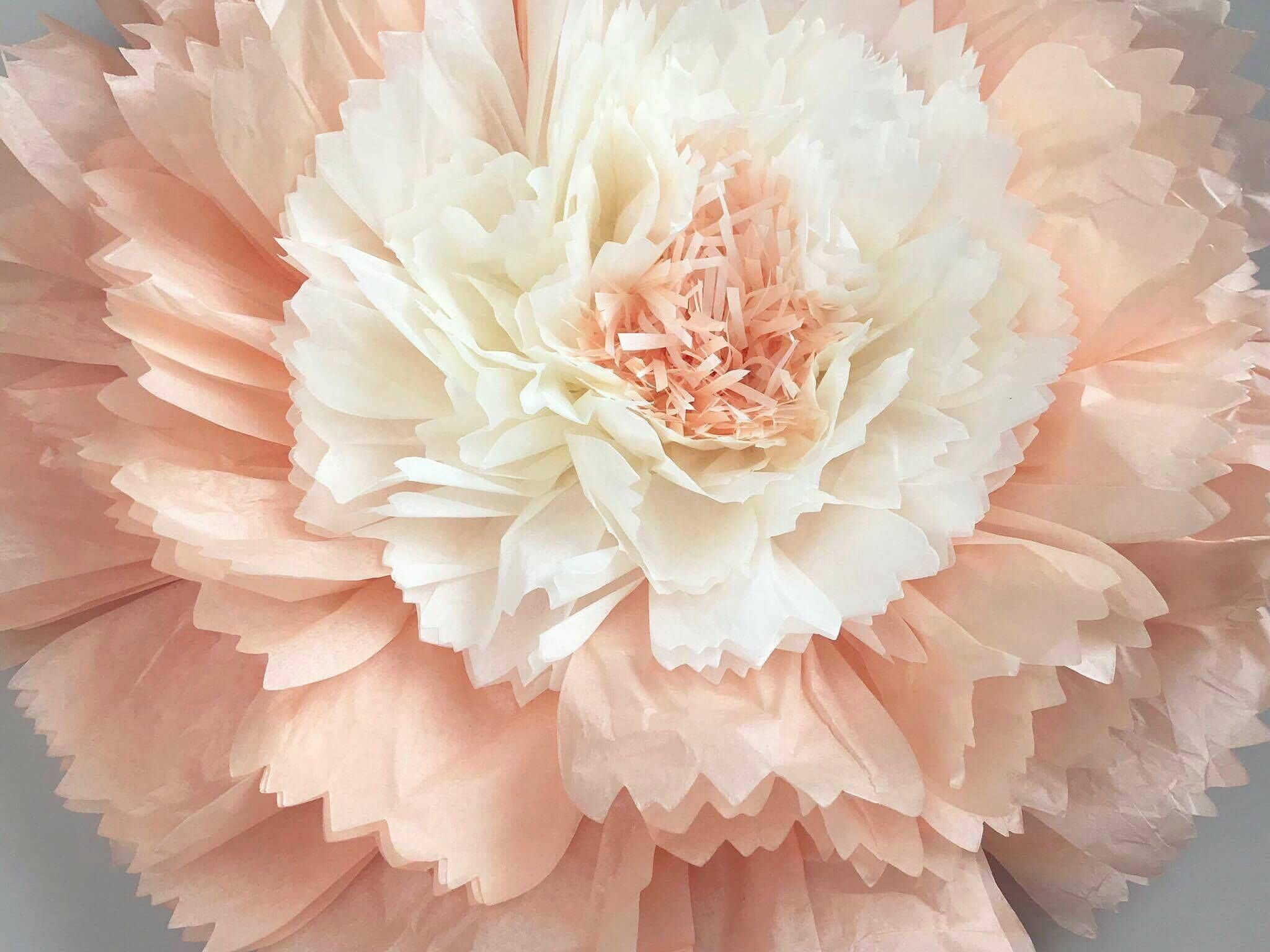 Giant Tissue Paper Flower Carnation Products Pinterest Paper