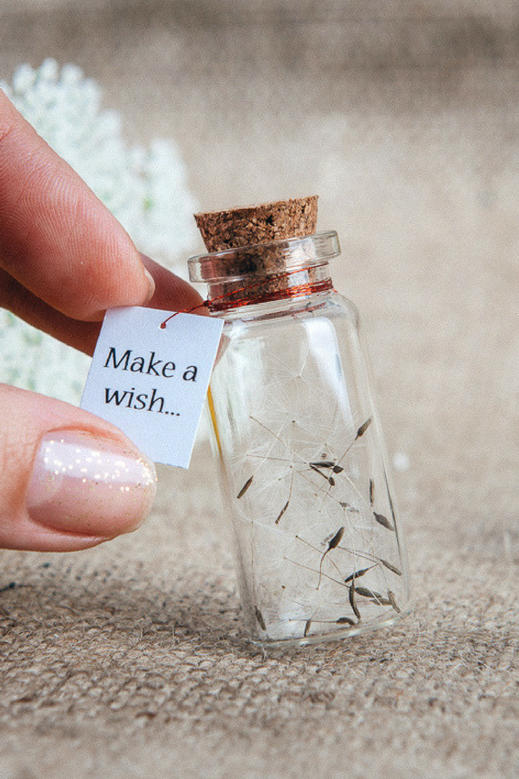 Make a wish Magic charm bottle Personalized gift for her Dandelion seeds Wishing gift Wish in a bottle Gag gift Fairy bottle Wish jar