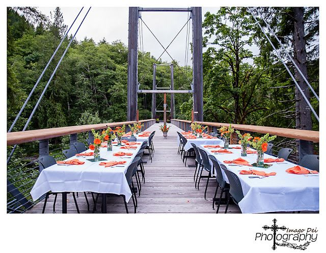 Tillamook oregon forest center wedding venue tillamook for Wedding dress rentals portland oregon