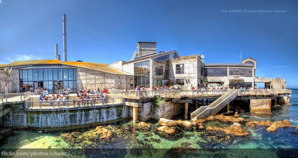 Monterey Bay Aquarium California Monterey Bay Aquarium