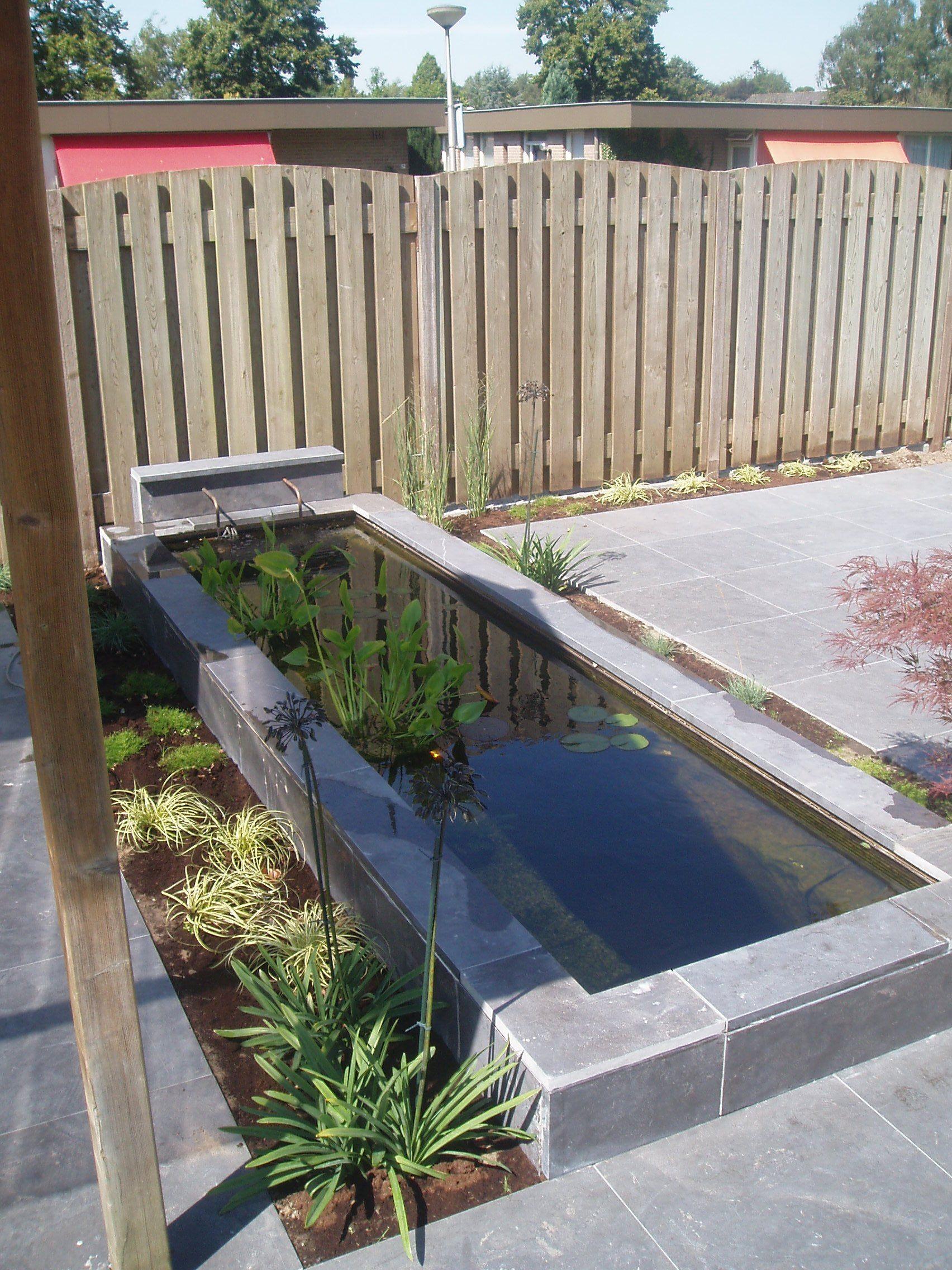 Mooie strakke vijvers google zoeken outdoor for Kleine tuinvijver