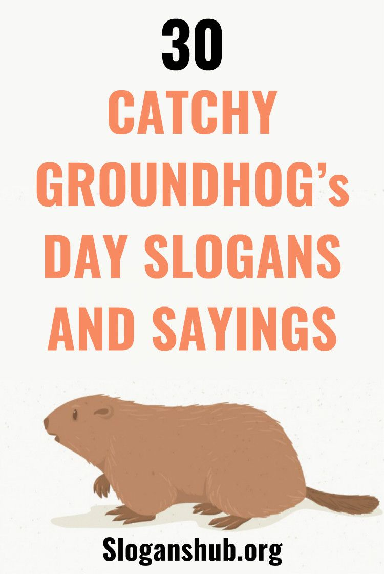 30 Catchy Groundhog S Day Slogans And Sayings Slogan Sayings Quotes For Kids