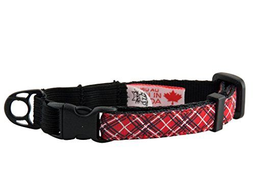 RC Pet Products Kitty Cat Collar 12 Red Tartan >>> This is