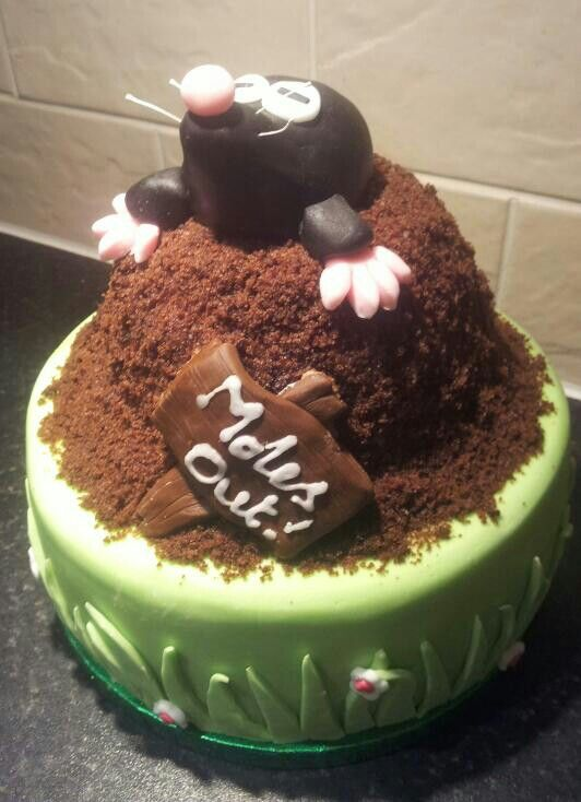 Mole Cake Mole Recipe