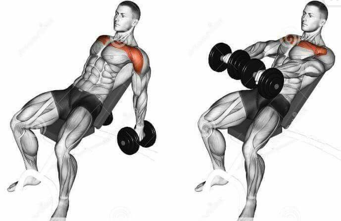 Pin By Thomas Larrive On Spieren Chest And Shoulder Workout Shoulder Workout Best Shoulder Workout