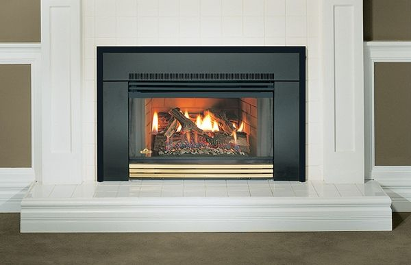 Napoleon Gi3600 Natural Vent Gas Fireplace Insert Gi3600 4nsb