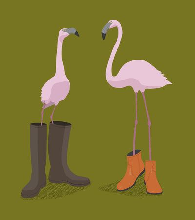 flamingo <3... i can think of a few people who would like this