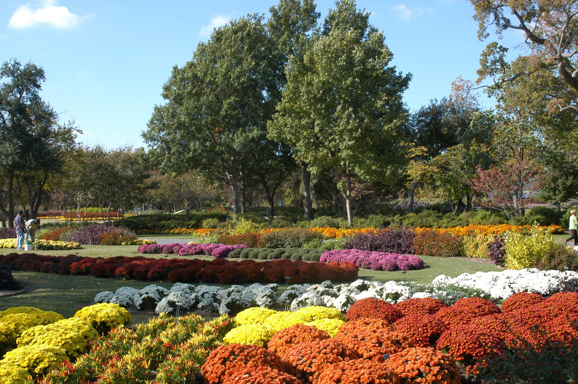 Dallas Arboretum, Autumn color, Fall, Garden, Flowers
