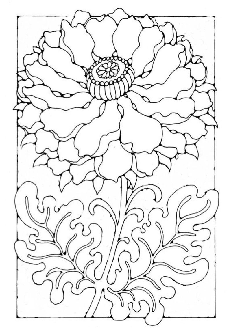 Big Poppy Coloring pages, Flower coloring pages