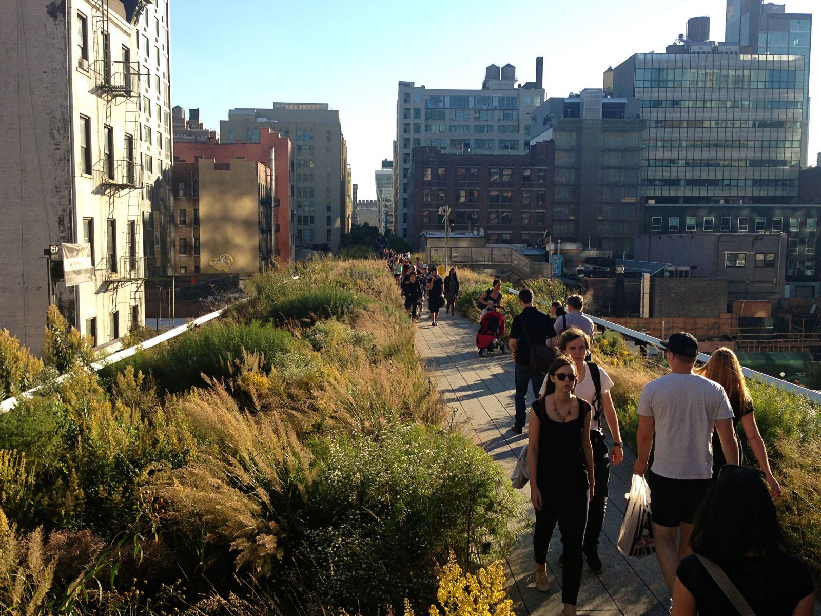 New York Tops the List of Most Walkable Cities  - ELLEDecor.com